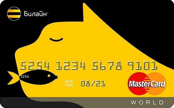 где можно взять кредитную карту minecraft